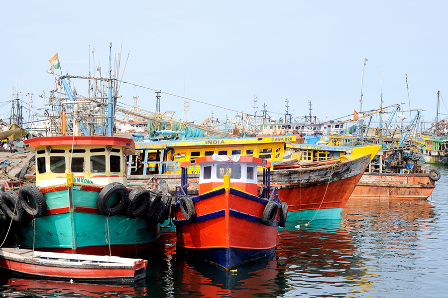 5.. Seasonal Fishing holidays