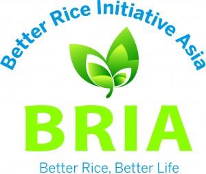 AW BRIA logo