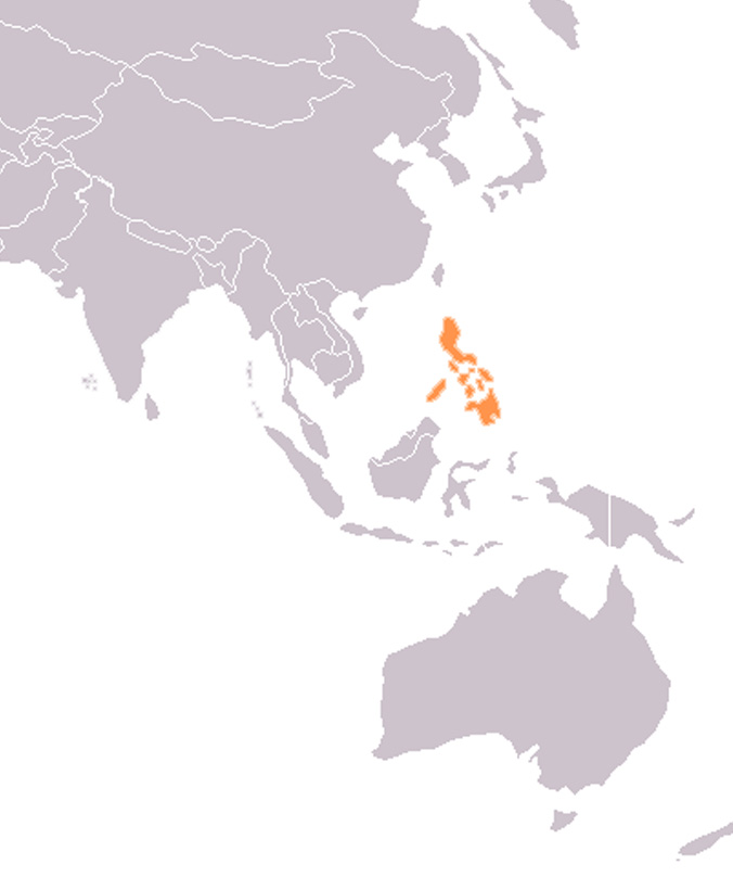 The Philippines and Pacific Island Countries  Sector Network