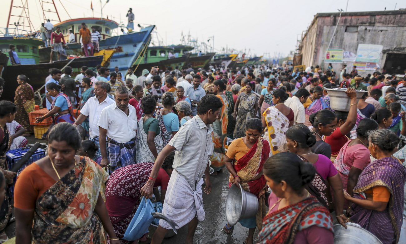 A fish market at Nagor harbour in Nagapattinam, Tamil Nadu, India. The bay can provide only a meagre living: 61% of fisherfolk live below the poverty line. Photograph: Dhiraj Singh/Bloomberg/Getty Images
