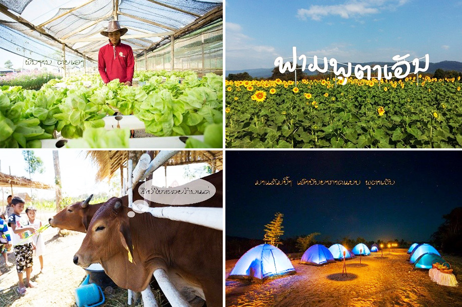 Promoting Sustainable Agriculture in Lao PDR – Progress on Standards in the Southeast Asian Food Trade (SAFT)'s integrated Public Private Partnership (iPPP)