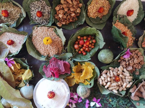 Local food diversity in Madhya Pradesh